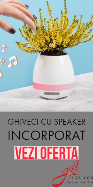 Giftforyou.ro: Ghiveci cu speaker incorporat