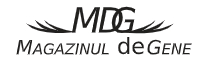 Magazinuldegene Logo